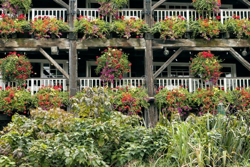 Bunte Blumen in hängenden Körben auf Balkonen lizenzfreie stockbilder