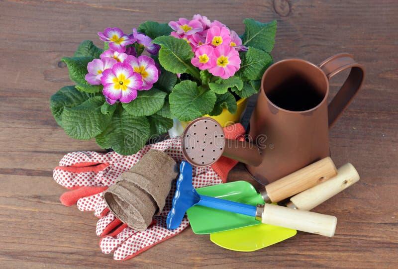 Bunte Blumen und Gartenwerkzeuge stockbild
