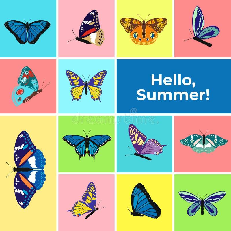 Bunte Fahne von Schmetterlingen, simsen hallo Sommer Stellen Sie von den Frühlings- und Sommerschmetterlingsikonen ein Hintergrun lizenzfreie abbildung
