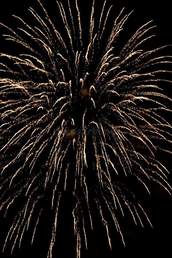 Bunte Feuerwerke in der Nacht lizenzfreies stockfoto