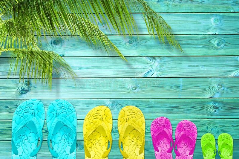 Bunte Flipflops einer vierköpfigen Familie auf einem hölzernen Plankenhintergrund des Türkises mit Kopienraum und Palme, Familien stockfotografie