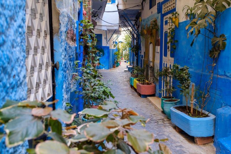 Bunte Gassen von Tanger Medina lizenzfreie stockfotografie