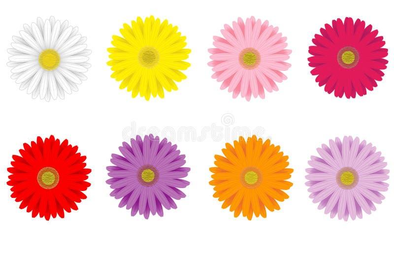 Bunte Gerbera-Gänseblümchen stock abbildung