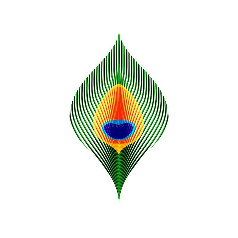 Bunte grüne orange und blaue Pfauschwanzfeder, Vektor lizenzfreie abbildung