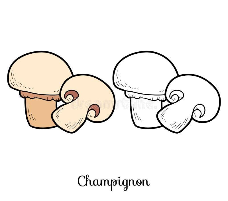Bunte grafische Abbildung Essbare Pilze, Champignon stock abbildung