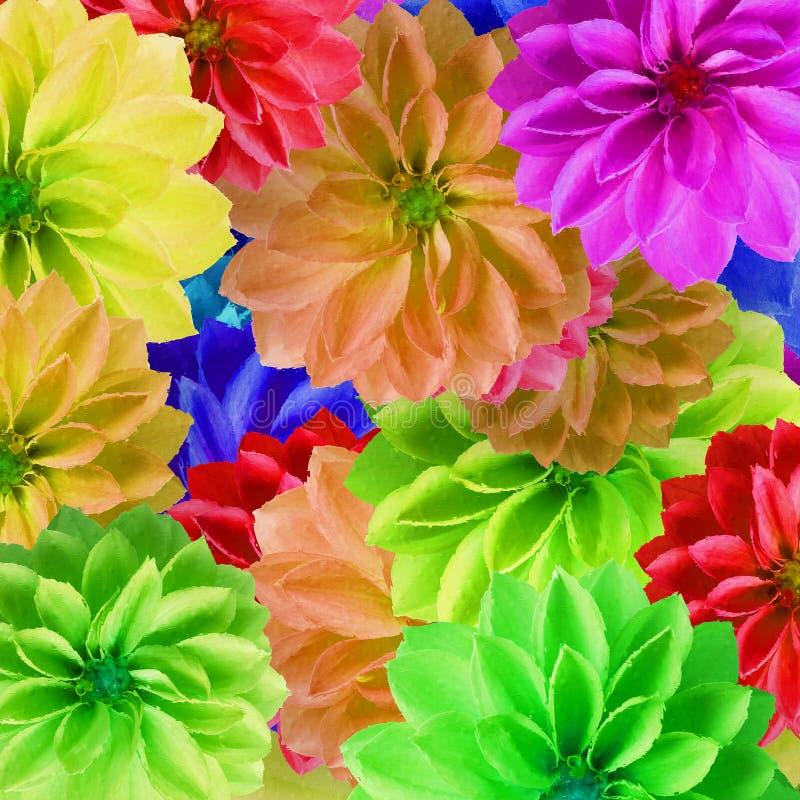 Bunte große Blumen stockbild