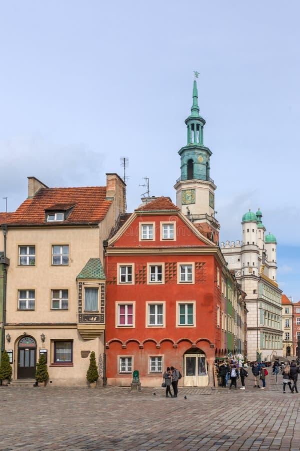 Bunte Häuser und Rathaus auf altem Marktplatz Posens, Polen stockbilder