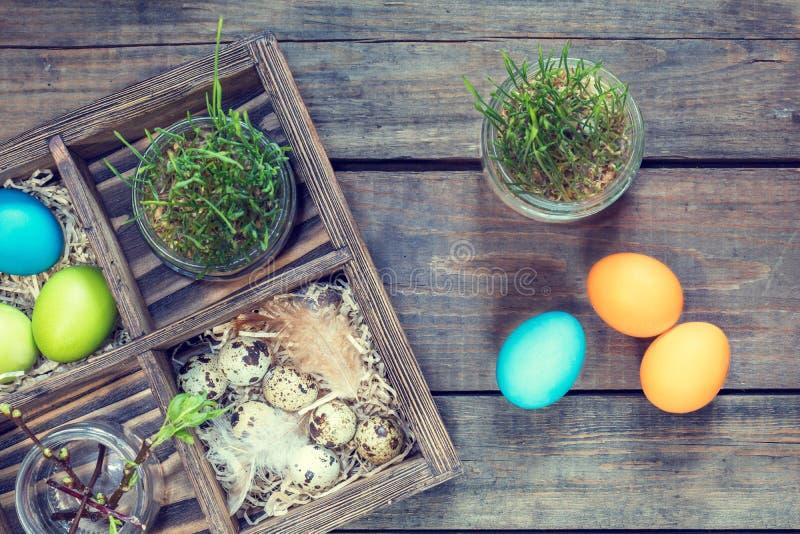 Bunte Hühnereiwachteleier keimten Weizen lizenzfreie stockbilder