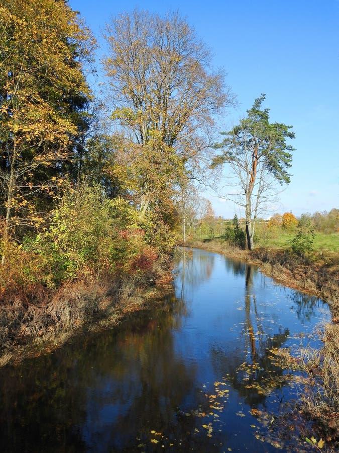 Bunte Herbstbäume nähern sich Fluss, Litauen lizenzfreies stockfoto