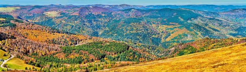 Bunte Herbstlandschaft der Vosges-Berge in Elsass, Frankreich lizenzfreie stockbilder