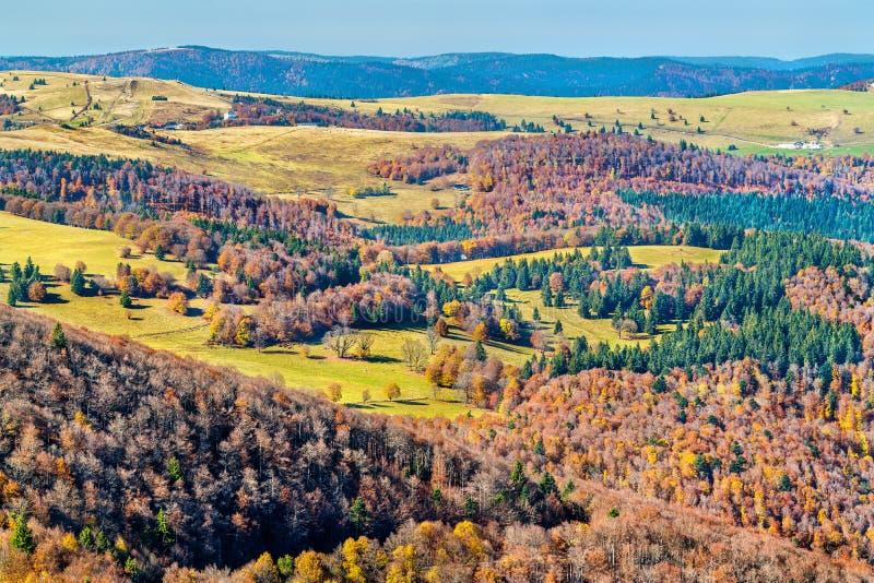Bunte Herbstlandschaft der Vosges-Berge in Elsass, Frankreich lizenzfreie stockfotografie