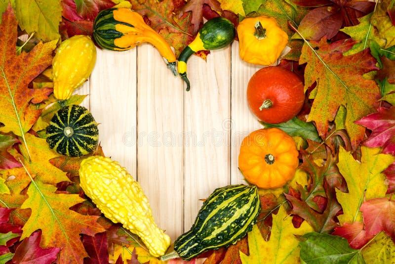Bunte herbstlichen Blätter und die Kürbise, die im Herzen liegen, formen stockbild