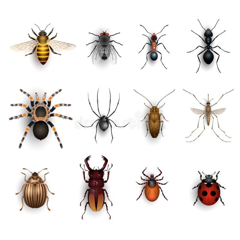 bunte insekten eingestellt stock abbildung illustration von biene 63994943. Black Bedroom Furniture Sets. Home Design Ideas