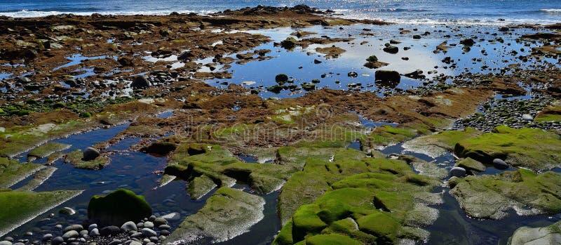 Bunte Küste mit der Ebbe lizenzfreies stockbild