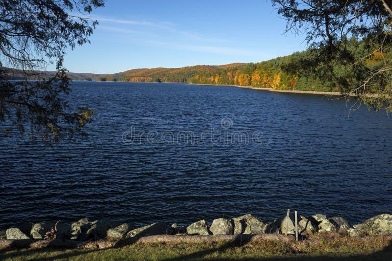 Bunte Küstenlinie von Barkhamsted-Reservoir, gestaltet durch Zeder tre lizenzfreies stockfoto