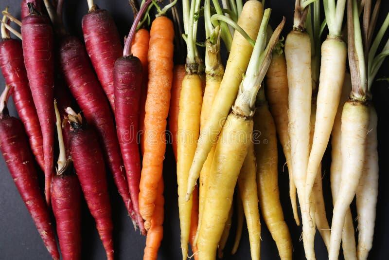 Bunte Karotten lizenzfreie stockfotos