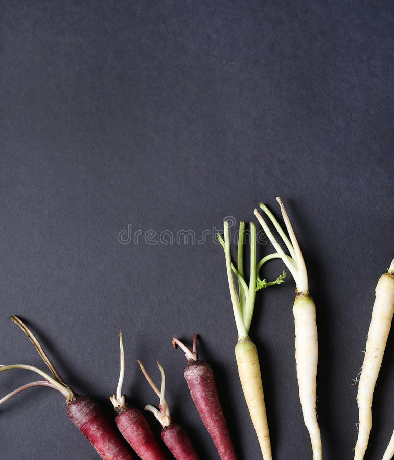 Bunte Karotten lizenzfreie stockfotografie