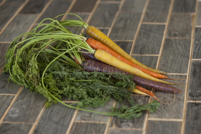 Bunte Karotten lizenzfreies stockbild