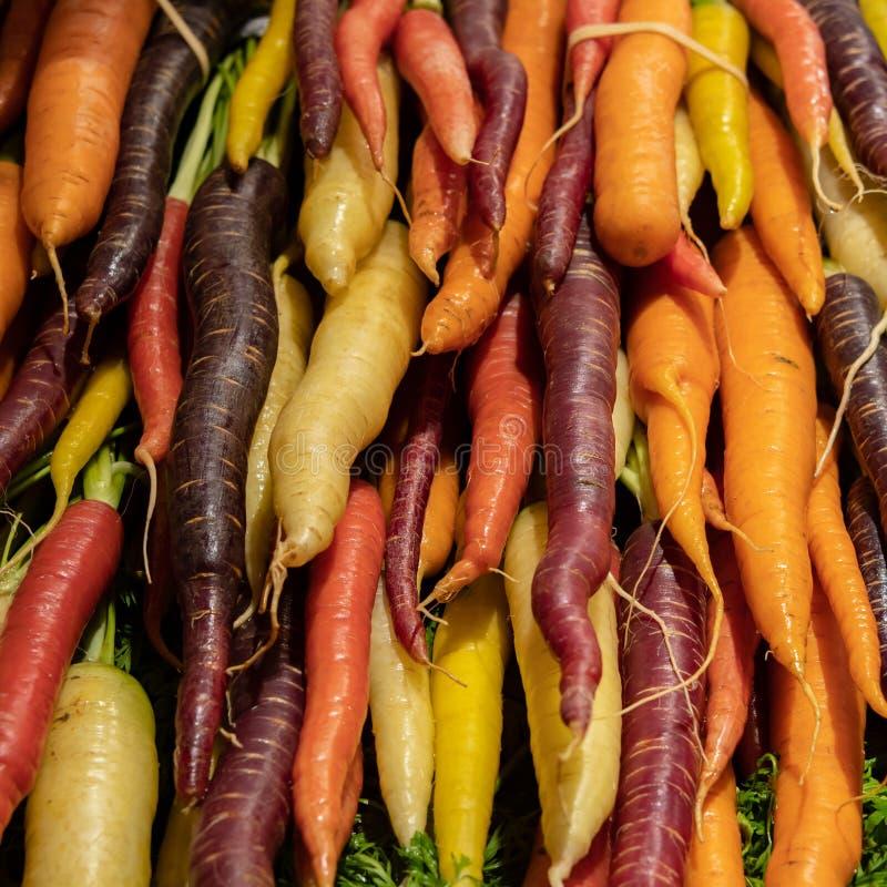 Bunte Karotten im Korb lizenzfreie stockfotos