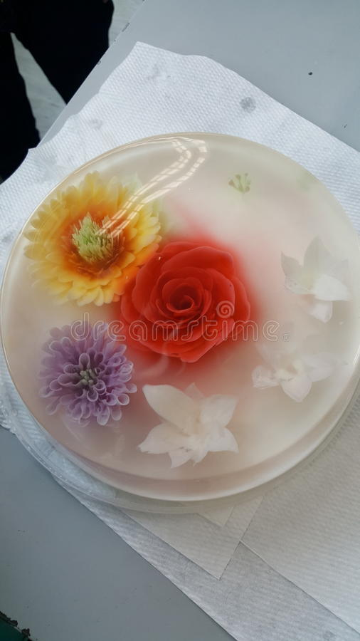Bunte Kuchen des Blumengelee-Kuchens stockbild