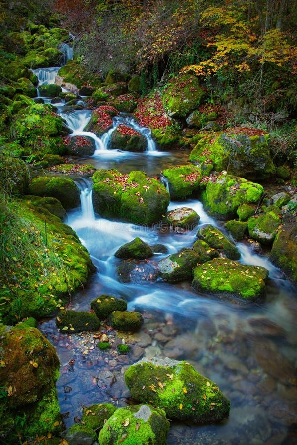 Bunte malerische Herbstlandschaft von Fluss mit kleinen Wasserfällen und moosigen Steinen stockbild
