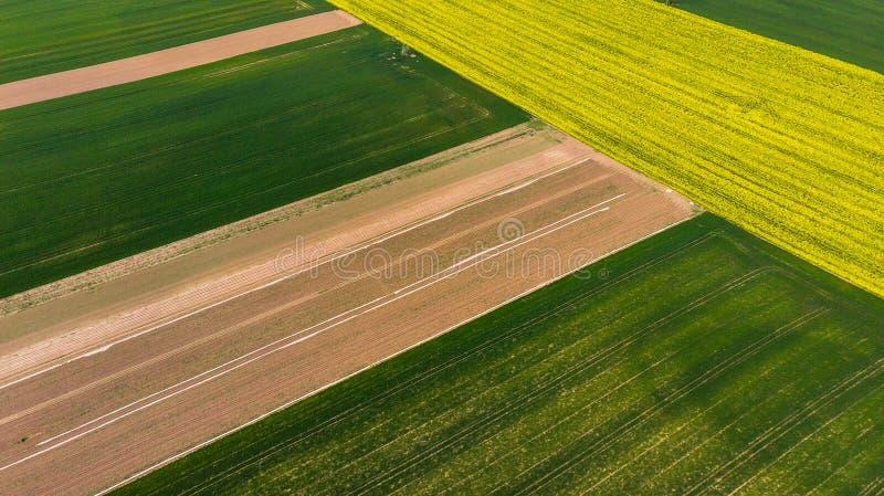 Bunte Muster auf den Erntegebieten am Ackerland, Vogelperspektive, Brummenfoto stockbilder
