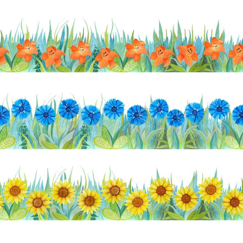 Bunte nahtlose mit Blumengrenzen Heller Hintergrund - Gras und Blumen lizenzfreie abbildung