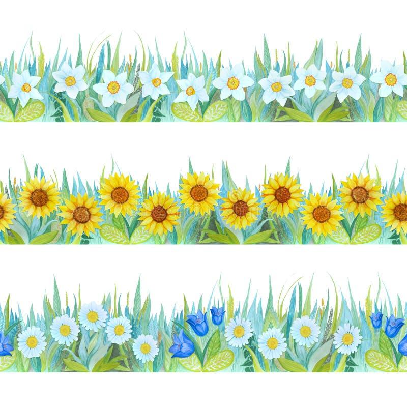 Bunte nahtlose mit Blumengrenzen Heller Hintergrund - Gras und Blumen Von Hand gezeichnete Aquarellillustration lizenzfreie abbildung