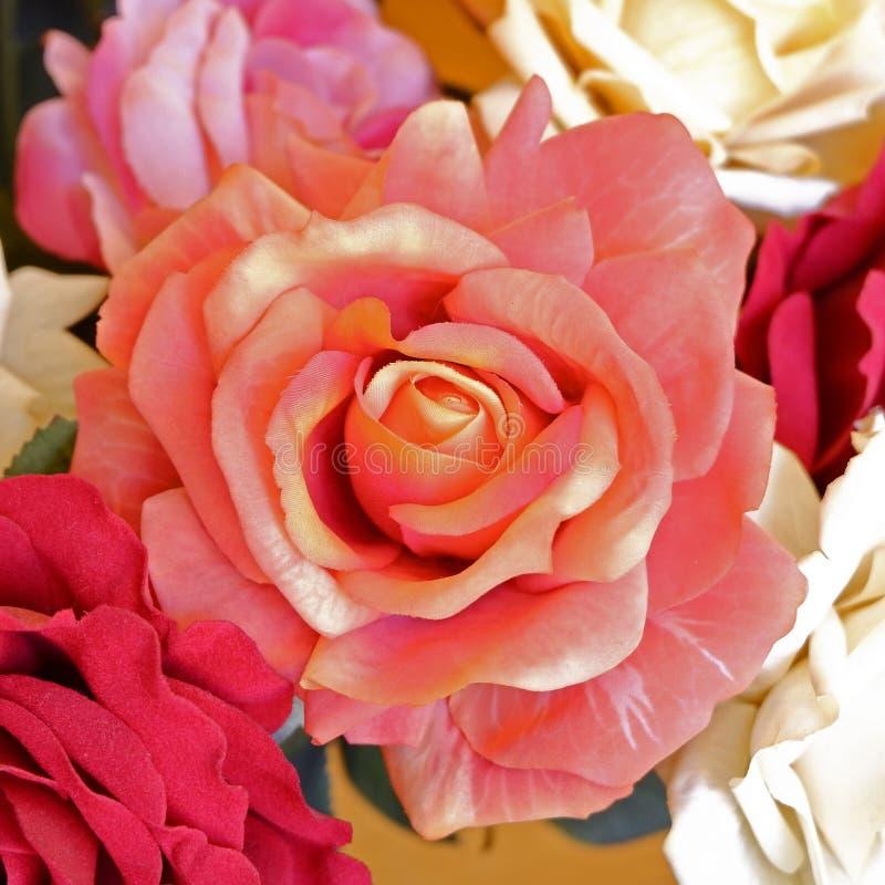 Bunte orange Fälschung stieg Draufsicht der Blume lizenzfreie stockfotografie