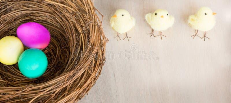 Bunte Ostereier im Nest, Küken auf hölzernem Hintergrund flach lizenzfreie stockfotografie