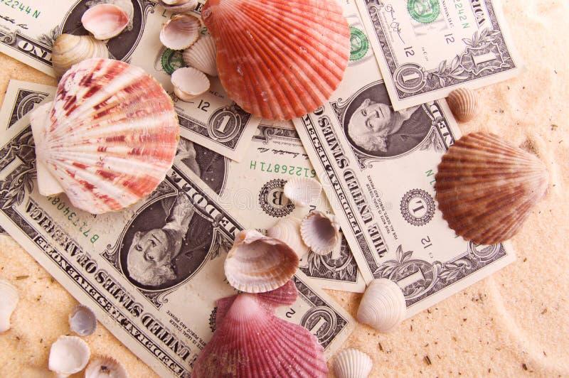 Bunte schöne Muscheln liegen auf den Dollarbanknoten stockfoto
