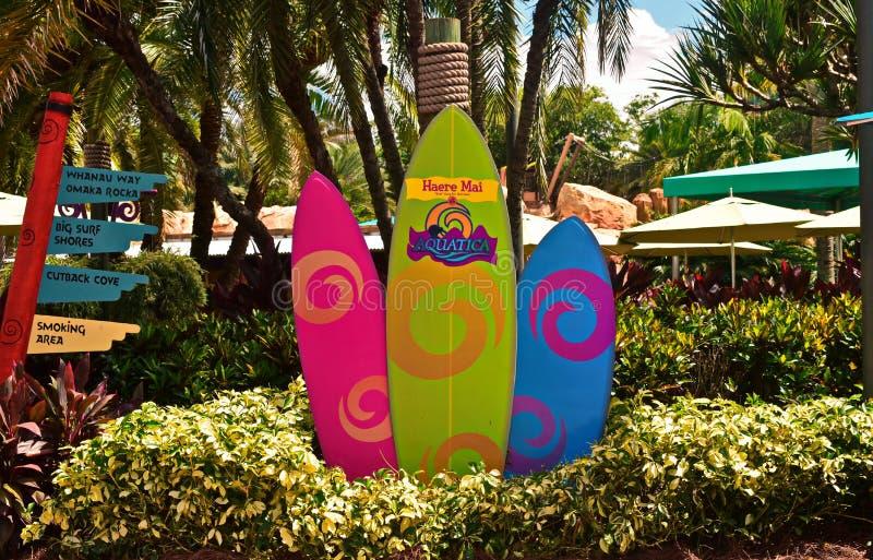 Bunte Surfbretter bei Seaworld Aquatica lizenzfreies stockfoto