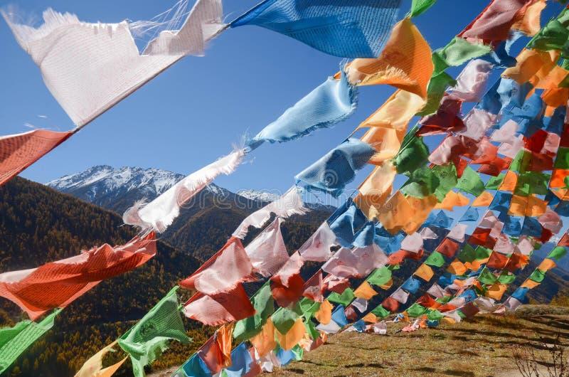 Bunte tibetanische Flaggen und Schneeberg an Siguniang-Naturschutzgebiet, Chengdu, China lizenzfreie stockfotografie