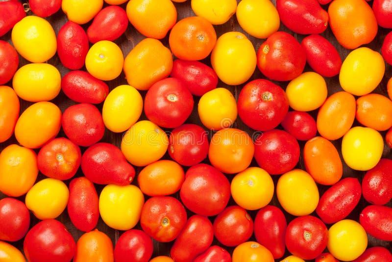 Bunte Tomaten Gelb, Orange und Rot lizenzfreies stockfoto