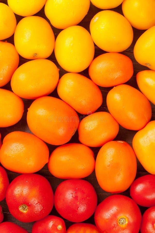 Bunte Tomaten Gelb, Orange und Rot stockfoto