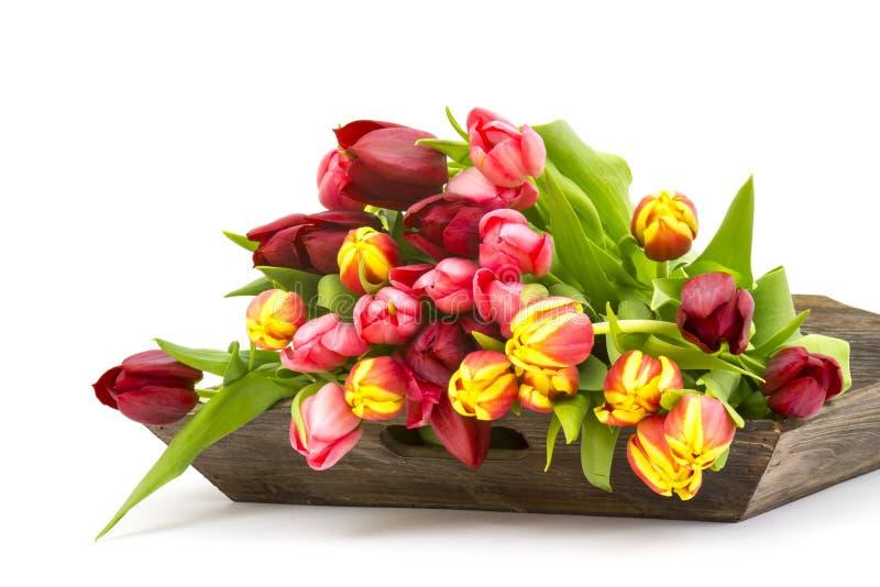 Bunte Tulpen auf einem hölzernen Behälter lizenzfreie stockfotografie