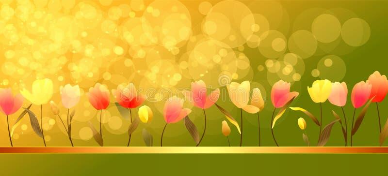 Bunte Tulpen mit Sonnenschein vektor abbildung