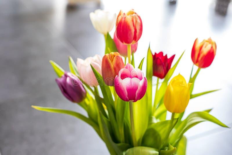 Bunte Tulpenblumen als Grußkarte Mothersday oder Fr?hlingskonzept stockbild
