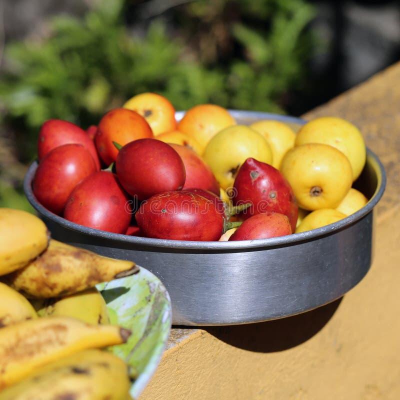 Bunte und gesunde lokale Früchte von Madeira, Portugal stockfotos