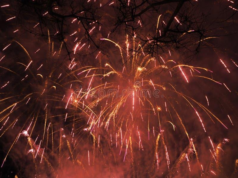 Bunte und schöne Feuerwerke stockbilder