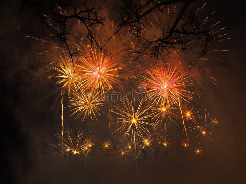 Bunte und schöne Feuerwerke lizenzfreies stockbild