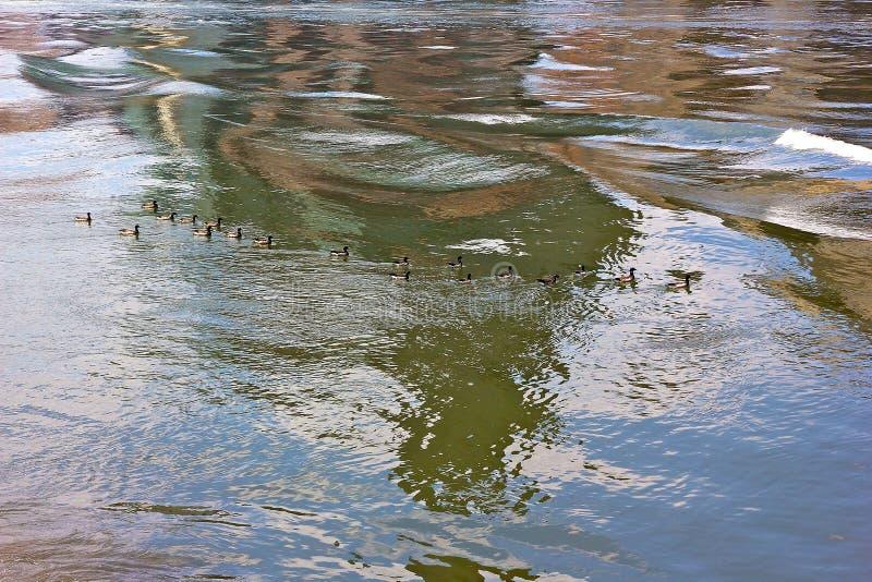 Bunte Wellen von East River lizenzfreie stockfotos