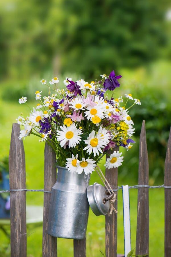 Bunte wilde Blumen auf einem Gartenzaun lizenzfreies stockfoto