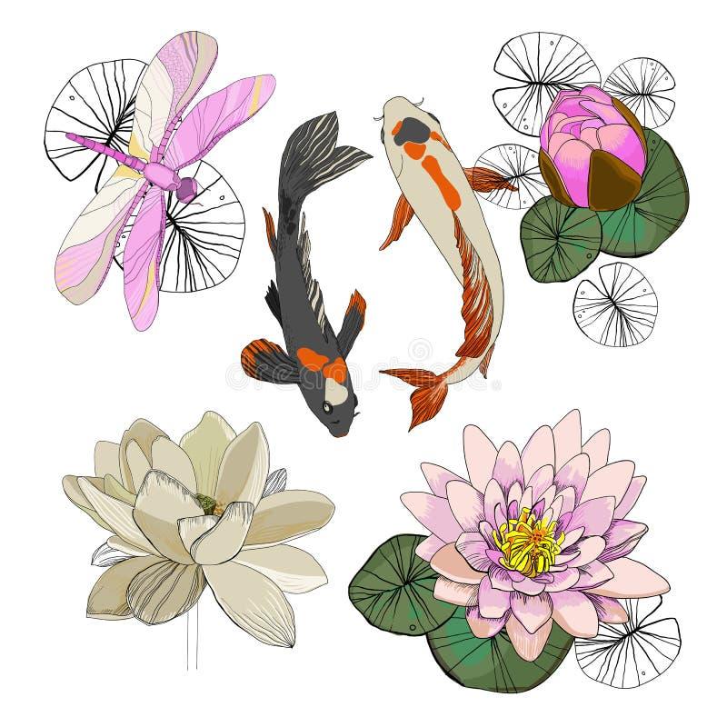 Bunte zeichnende Lotus Set lizenzfreie abbildung