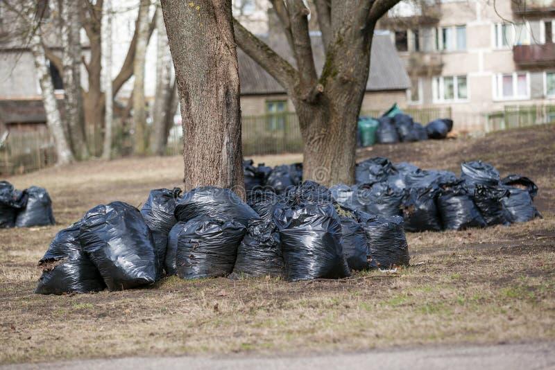 Bunten av avskrädepåsar för tar ut gör ren upp staden parkerar på våren och hösten fotografering för bildbyråer