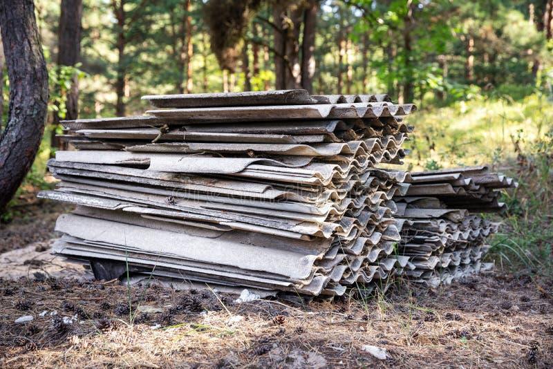 Bunten av gammal asbest kritiserar takark i skog royaltyfri fotografi