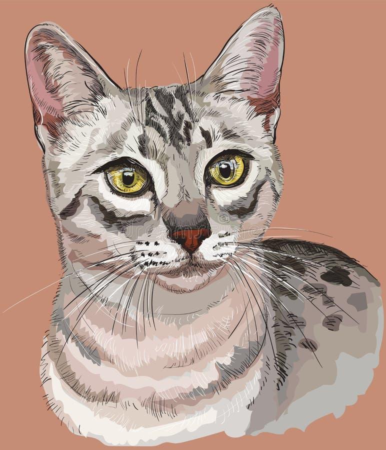 Bunter Ägypter Mau Cat lizenzfreie abbildung
