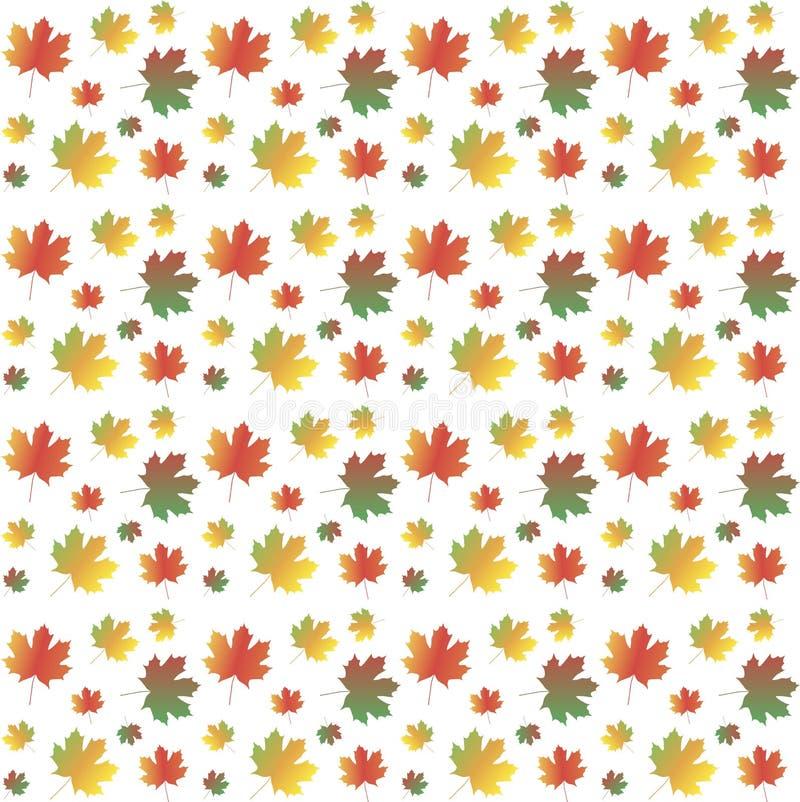 Bunter Ahornblatthintergrund auf Weiß, Herbst, Vektor stock abbildung