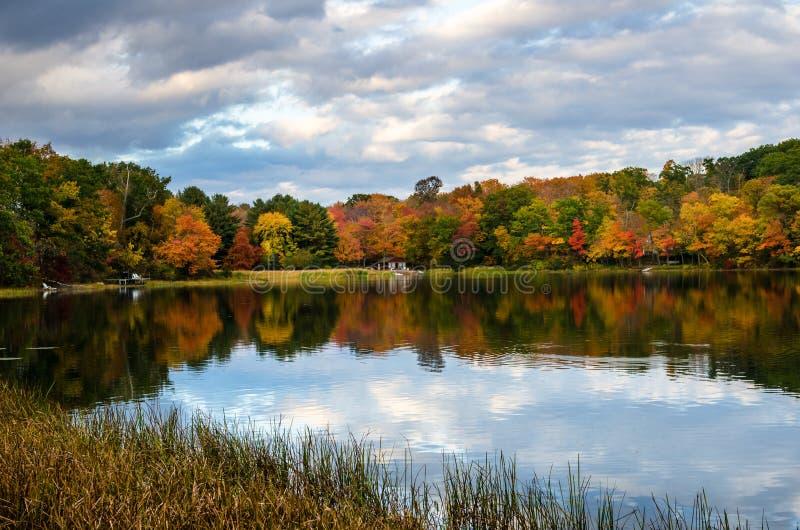 Bunter Autumn Trees auf dem Ufer von einem See und von bewölkten Himmel stockbild