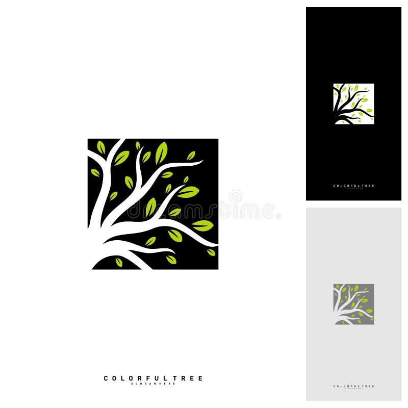 Bunter Baum Logo Design Template Luxusbaumlogo Konzepte Natur Logo Concepts Vector lizenzfreie abbildung
